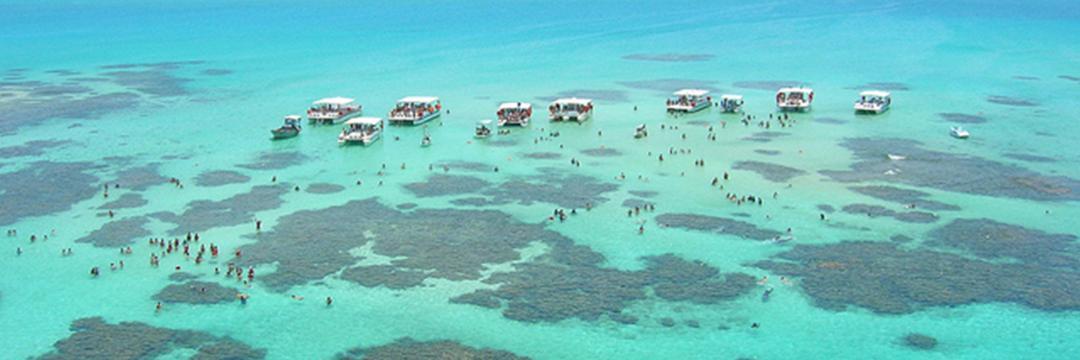 Caribe brasileiro, eu estive em Alagoas e vou contar como tudo aconteceu...